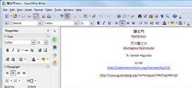 Open Office Writer screen